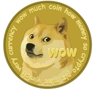 New Payment Method Dogecoin