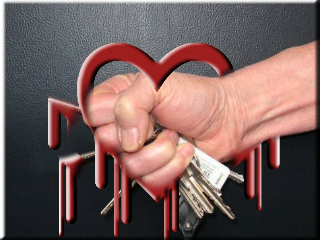 Steal a Private Crypto Key Using Heartbleed