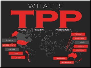 What Is the TPP